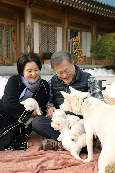 Moon's posted two pictures of the pooches, one of them showing five furry white pups cuddled on Moon's lap with the sixth in the first lady's arms