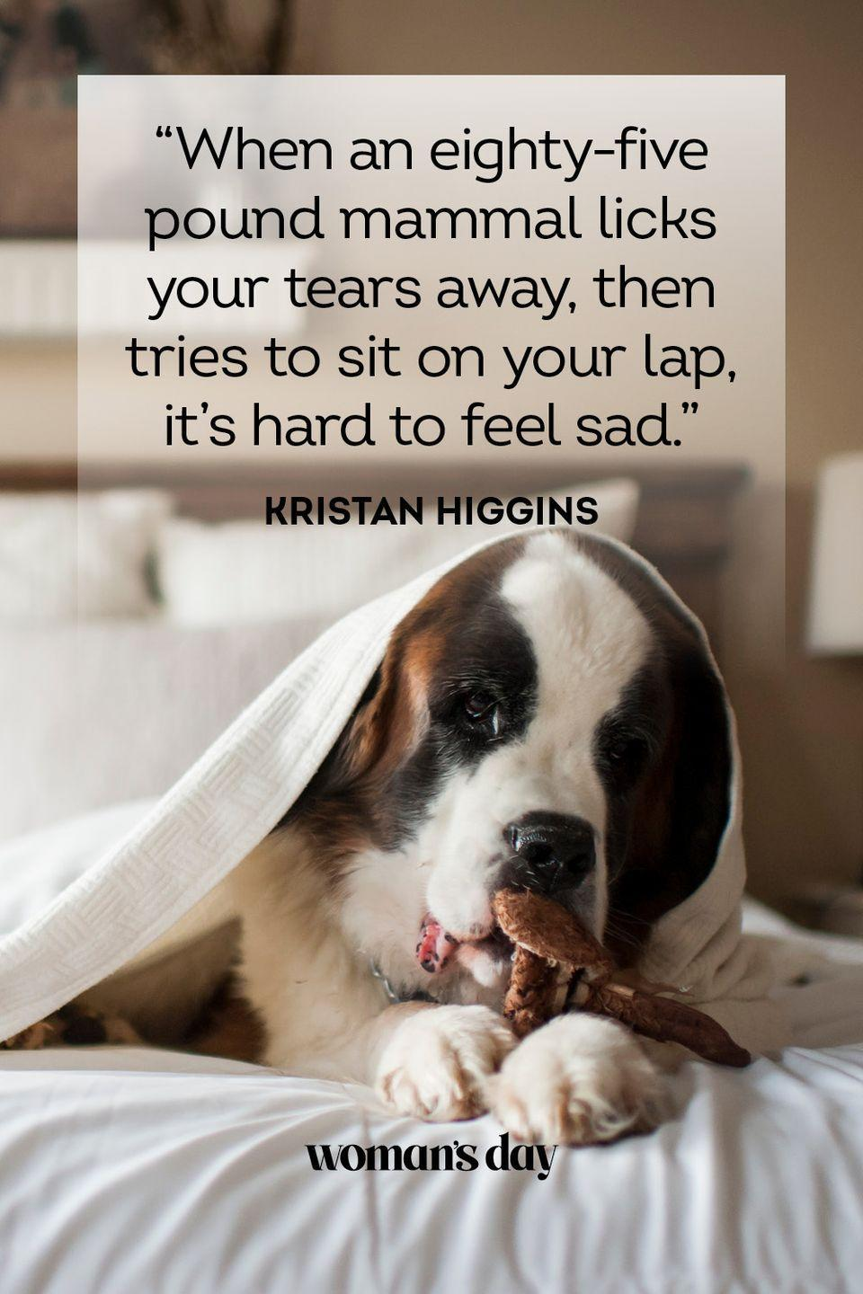 """<p>""""When an eighty-five pound mammal licks your tears away, then tries to sit on your lap, it's hard to feel sad.""""</p>"""