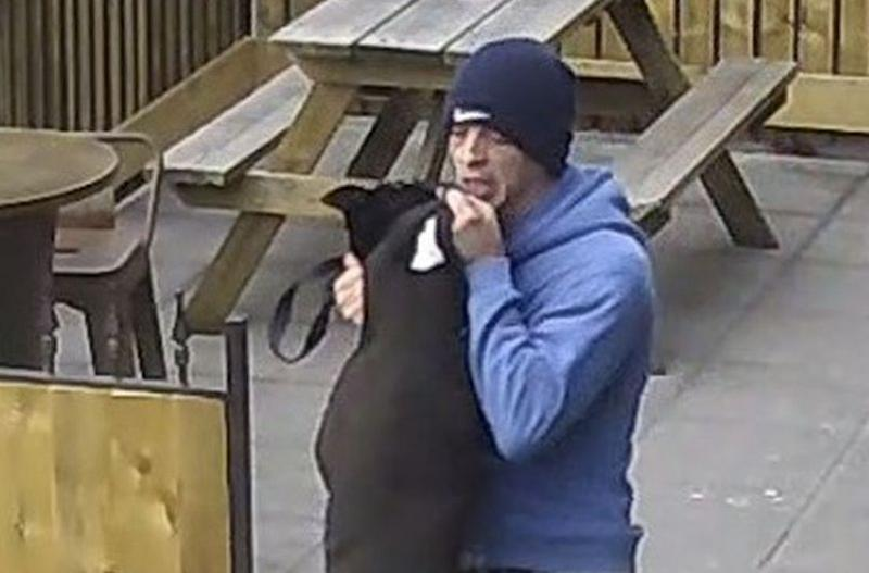 Police are trying to trace a man who was seen punching and kicking a dog in a pub beer garden (Dorset Police)