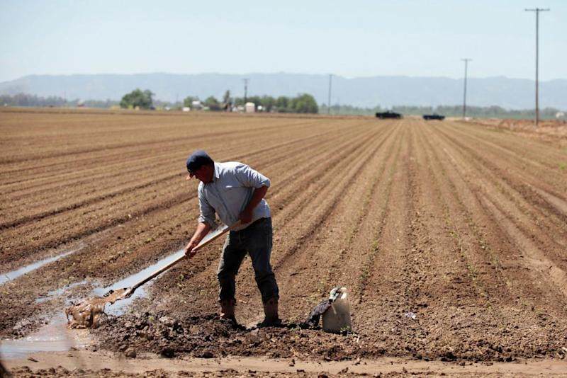 A farm worker repairs irrigation pipes during spring planting in the Central Valley in Davis, California, in 2017.