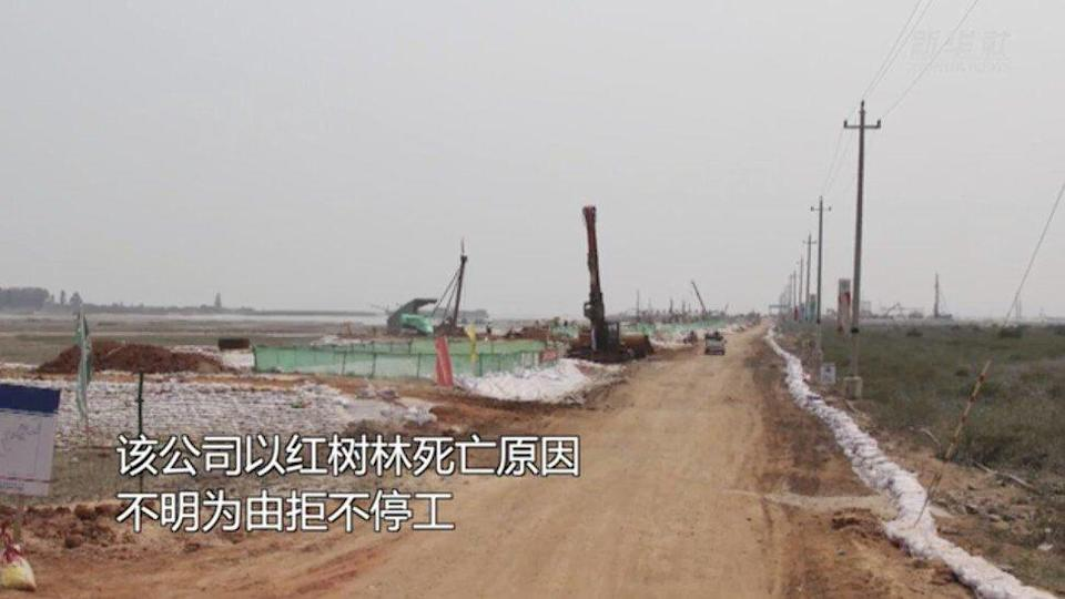Beibu Gulf Port Group's construction company ignored the ministry's warnings. Photo: Weibo