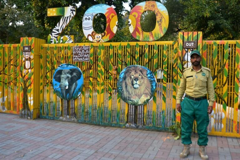 Pakistan's climate change ministry has taken charge of Islamabad Zoo's rehabilitation with plans to establish a vastly improved conservation centre