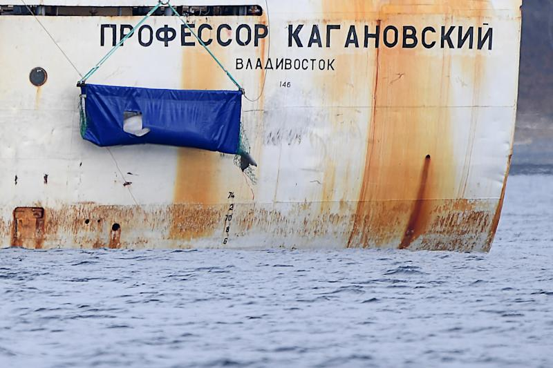 PRIMORYE TERRITORY, RUSSIA - NOVEMBER 8, 2019: Beluga whales from the controversial Adaptation Centre for Sea Going Mammals located near Nakhodka, unofficially known as 'whale jail', are released from the Professor Kaganovsky research vessel into the wild in the Sea of Japan, off Russia's Pacific coast; on October 24, a board of experts at the Russian Research Institute of Fisheries and Oceanography (VNIRO) decided that the remaining 50 beluga whales kept in the adaptation centre be released in the Sea of Japan, off the Lazovsky Nature Reserve, and not in the Sea of Okhotsk as was planned before; in 2018, it was discovered that 90 wild belugas and 11 wild orcas were kept in the so-called 'whale prison' in Primorye Territory to be sold to Chinese amusement parks. Yuri Smityuk/TASS (Photo by Yuri Smityuk\TASS via Getty Images)