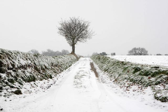 A country lane in Saxlingham, Norfolk, after heavy snowfall.