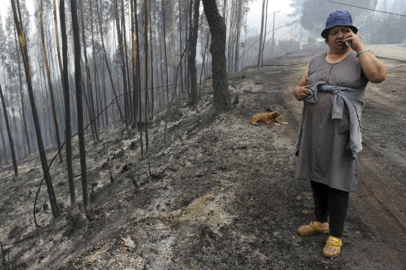 Zulmira, 56, talks to her daughter on a mobile phone by the side of a burnt road in Casal de Alge, outside the village of Figueiro dos Vinhos central Portugal, Monday, June 19, 2017. More than 2,000 firefighters in Portugal battled Monday to contain major wildfires in the central region of the country, where one blaze killed 62 people, while authorities came under mounting criticism for not doing more to prevent the tragedy. (AP Photo/Paulo Duarte)