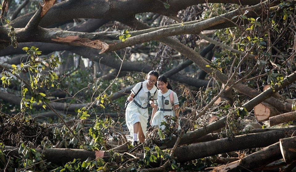 The amendments were first prompted by Typhoon Mangkhut, which left a trail of destruction in 2018. Photo: Apple Daily