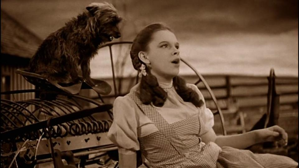Judy Garland was forever changed after appearing in The Wizard of Oz (Credit: MGM)