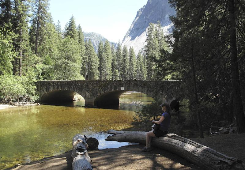 In this June 12, 2012 photo, Christa Danielson of Eugene, Ore., stops to take a photo of Ahwahnee Bridge, one of three historic bridges with abutments in the Merced River that could be removed under plans being developed to restore natural flows, in Yosemite Valley, Calif. This month the National Trust for Historic Preservation placed the Sugar Pine, Ahwahnee and Stoneman bridges in Yosemite National Park on its most endangered list, saying these early examples of natural park architecture should be protected. (AP Photo/Tracie Cone)