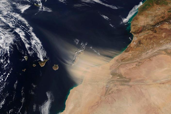 This Saturday, Feb. 22, 2020 image made available by NASA shows a dust storm approaching the Canary Islands, center, off the coast of Morocco.