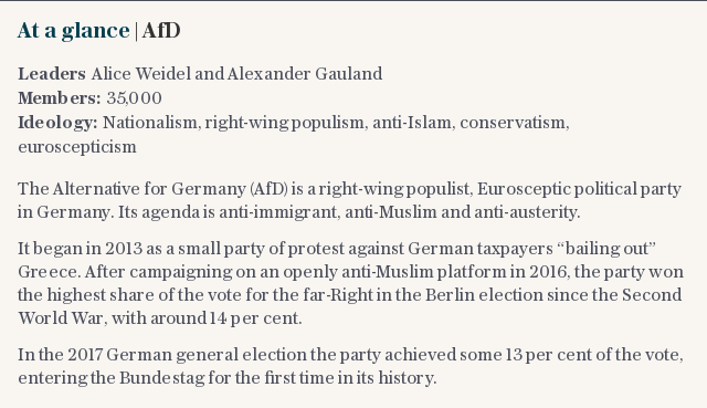 At a glance | Who are the AfD?