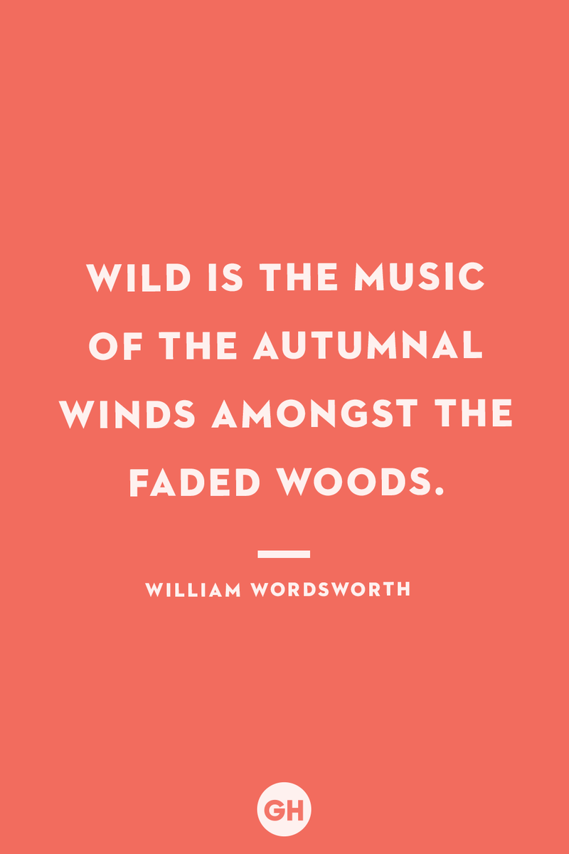 <p>Wild is the music of the autumnal winds amongst the faded woods.</p>
