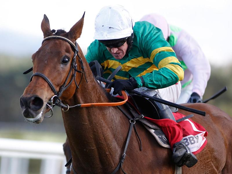 Djakadam is the favourite for Friday's Cheltenham Gold Cup (Getty)