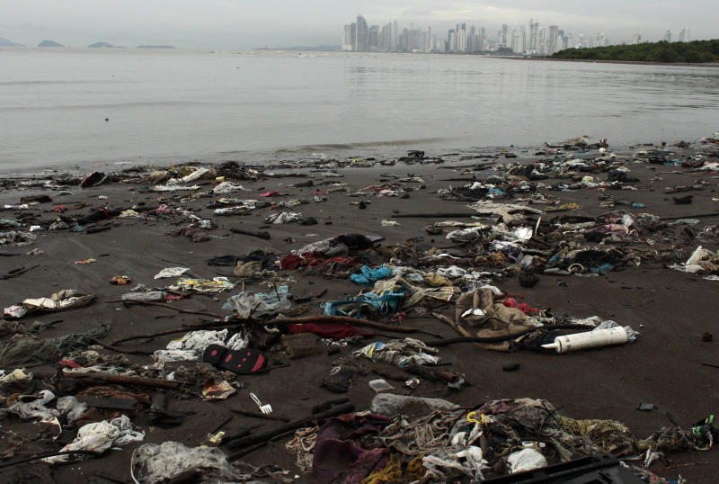 In this photo taken Oct. 18, 2012, trash litters the shore near a mangrove forest that hugs the coastline of Panama City. A multi-year boom in Central America's fastest-growing economy has unleashed a wave of development along the Bay of Panama. Environmentalists warn that the construction threatens one of the world's richest ecosystems and the habitat for as many as 2 million North American shorebirds. (AP Photo/Arnulfo Franco)