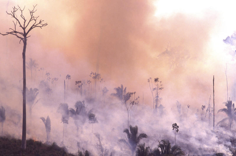 Incendio en Amazonas. (Ricardo Beliel/Brazil Photos/LightRocket via Getty Images)
