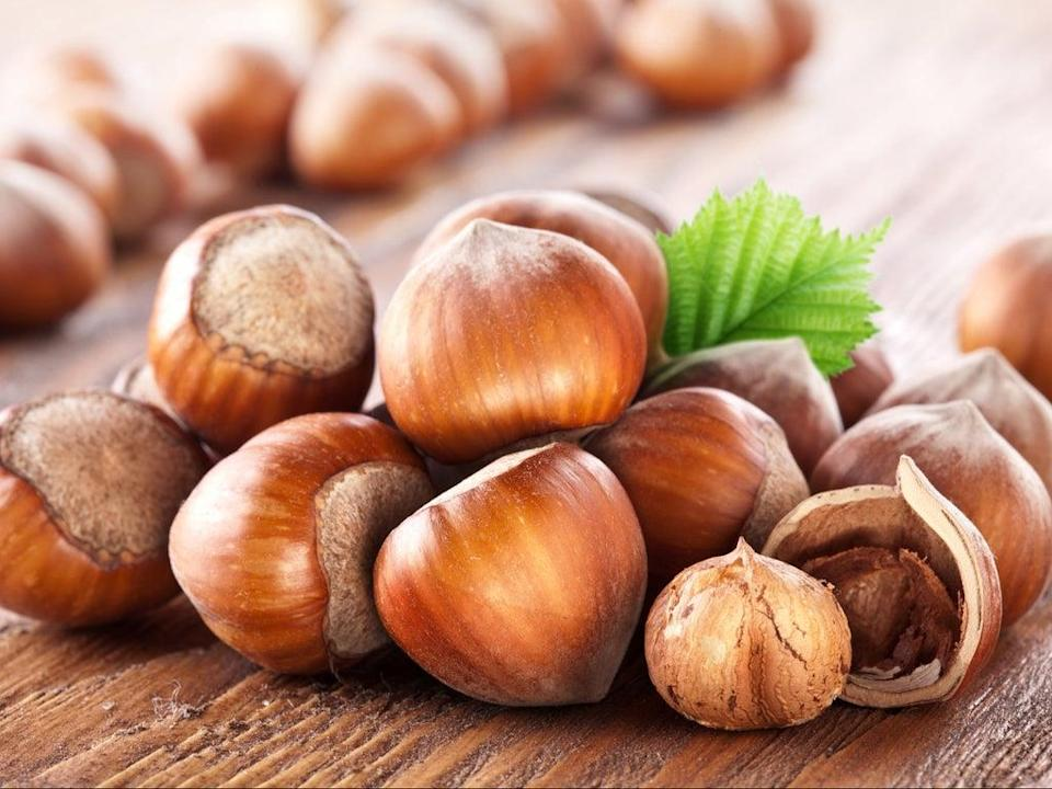 Could hazelnuts provide us with new low-carbon biofuels? (Getty)