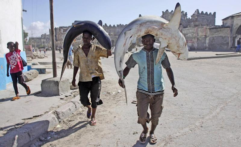"""FILE - In this May 17, 2013, file photo, Somali fishermen carry their catch on their heads as they walk to the market in Mogadishu, Somalia. Twenty years after the U.S. military's """"Black Hawk Down"""" disaster, the Obama administration is slowly stepping up relations with Somalia even though security requires American officials to be sheltered behind blast walls and unable to see nearly any of the chaotic country. (AP Photo/Farah Abdi Warsameh)"""