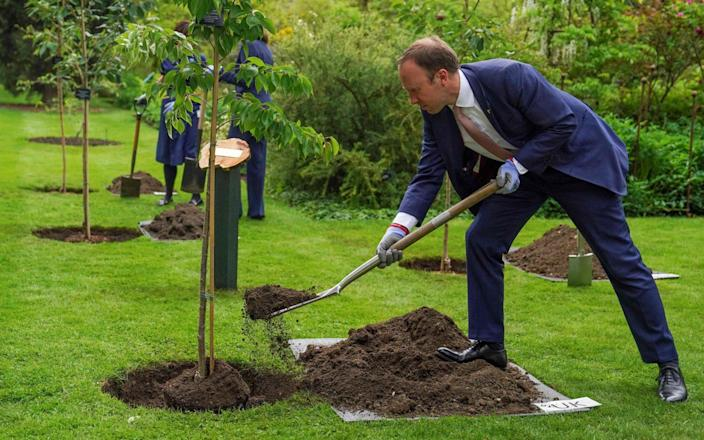 Health Secretary Matt Hancock plants a tree during a memorial tree planting ceremony at Oxford Botanic Gardens, following the G7 Health Ministers Meeting on June 4 2021 - Steve Parsons/AFP
