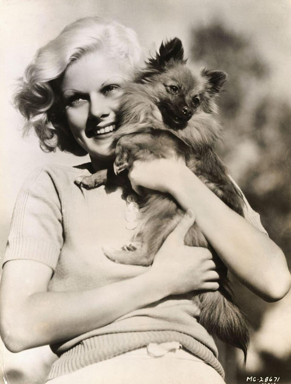 """<p>Known as the original blonde bombshell, Jean Harlow was the <a href=""""https://www.history.com/this-day-in-history/jean-harlow-dies"""" rel=""""nofollow noopener"""" target=""""_blank"""" data-ylk=""""slk:darling of MGM"""" class=""""link rapid-noclick-resp"""">darling of MGM</a> at the beginning of what is considered Hollywood's Golden Age, and her Pekingese, Oscar, was by her side during that time. Here, the actress is seen hugging her dog, who was <a href=""""https://www.imdb.com/name/nm0001318/bio"""" rel=""""nofollow noopener"""" target=""""_blank"""" data-ylk=""""slk:inspiration for her role in"""" class=""""link rapid-noclick-resp"""">inspiration for her role in </a><em><a href=""""https://www.imdb.com/name/nm0001318/bio"""" rel=""""nofollow noopener"""" target=""""_blank"""" data-ylk=""""slk:Dinner at Eight"""" class=""""link rapid-noclick-resp"""">Dinner at Eight</a>. </em></p>"""