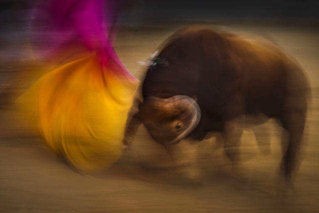 <p>Spanish bullfighter Juan del Alamo during a bullfight at Las Ventas bullring in Madrid, May 12, 2015. (Photo: Daniel Ochoa de Olza/AP) </p>
