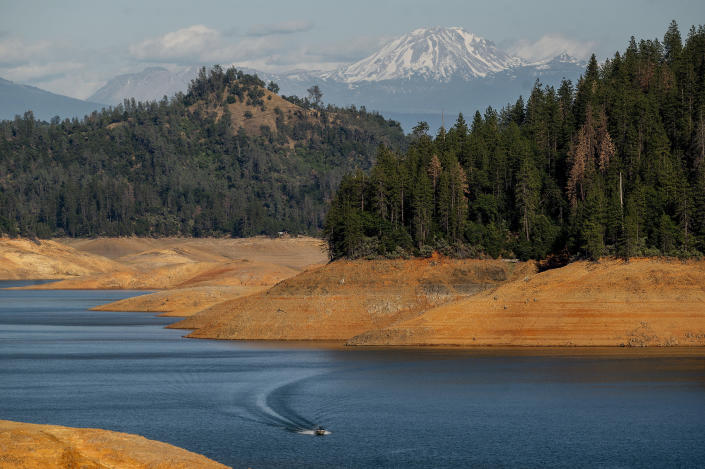 A boat crosses Shasta Lake on Sunday, May 23, 2021, in Shasta Trinity National Forest, Calif. The reservoir is at 45 percent of capacity and 52 percent of its historical average. (AP Photo/Noah Berger)