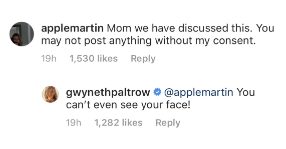 Apple Martin response to mother Gwyneth Paltrow's ski-lift selfie of them both