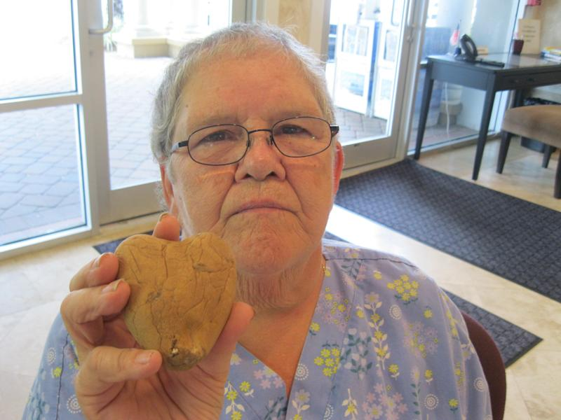 """Sally Colburn holds a heart-shaped potato that she found. (Wendy Victora / <a href=""""http://www.nwfdailynews.com/local/woman-receives-message-from-the-beyond-from-husband-1.184125?page=1"""" target=""""_blank"""">Northwest Florida Daily News</a>)"""