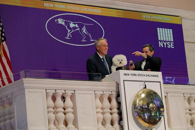 Flynn, a bichon frise and winner of Best In Show at the 142nd Westminster Kennel Club Dog Show, is held by handler Bill McFadden during a visit to ring the opening bell of the New York Stock Exchange in New York, U.S., February 16, 2018. REUTERS/Lucas Jackson