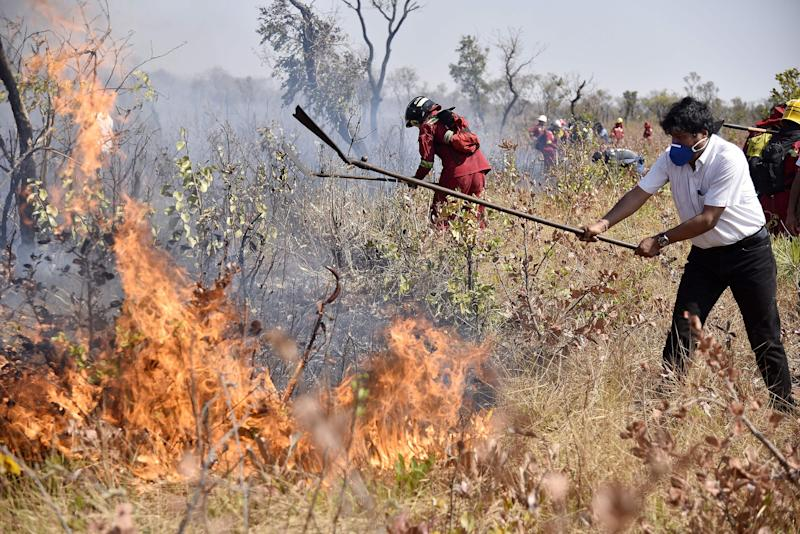 Brazil Bans Legal Burning for 60 Days in Attempt to Help