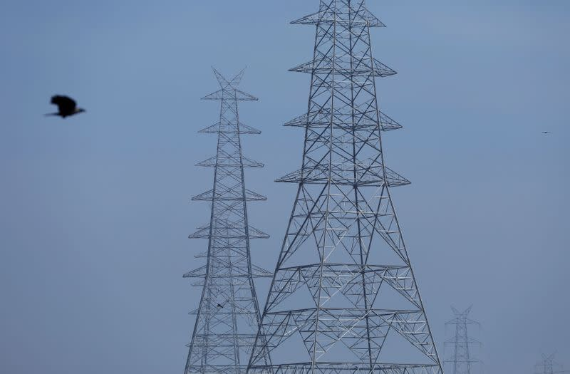 India's annual power demand seen falling for first time in almost four decades - Moody's unit