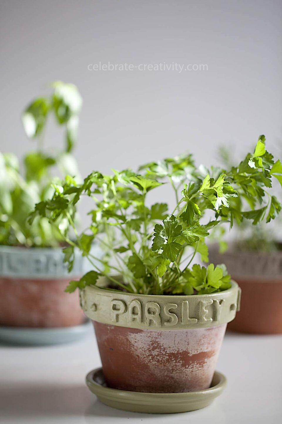"""<p>For the gardener or the cook, a small herb garden, complete with colorful DIY labels makes a great—and very useful—gift. </p><p><a href=""""https://celebrate-creativity.com/my_weblog/2015/07/herb-potts-with-diy-clay-labels.html"""" rel=""""nofollow noopener"""" target=""""_blank"""" data-ylk=""""slk:Get the tutorial."""" class=""""link rapid-noclick-resp"""">Get the tutorial.</a></p><p><a class=""""link rapid-noclick-resp"""" href=""""https://www.amazon.com/CiaraQ-Polymer-Conformed-Non-Toxic-Beginners/dp/B089Y7GB97?tag=syn-yahoo-20&ascsubtag=%5Bartid%7C10072.g.27603456%5Bsrc%7Cyahoo-us"""" rel=""""nofollow noopener"""" target=""""_blank"""" data-ylk=""""slk:SHOP CLAY"""">SHOP CLAY</a></p>"""