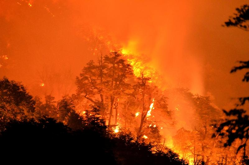 A blaze tears through the Conguillo National Park in Chile in March 2015 as hundreds of plant species were wiped out in the country's drought-stricken south (AFP Photo/Str)