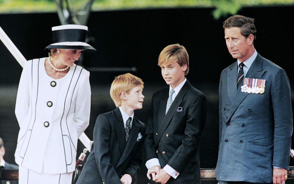 Diana, Princess of Wales, with Prince Harry, Prince Charles and Prince William in 1995  - Johnny Eggitt/ AFP