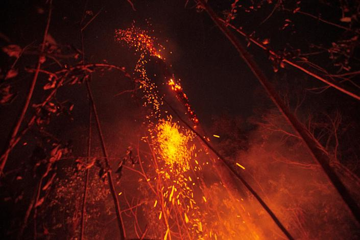 A large area of jungle is consumed by the flames of one of the great fires that plague the Amazon near Porto Velho on Aug. 24, 2019. (Photo: Joedson Alves/EFE via ZUMA Press)