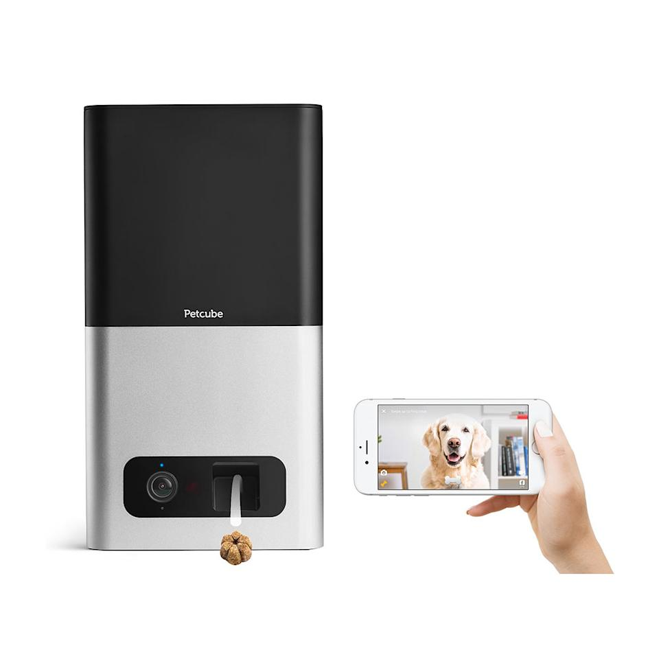"<p>Sure it's a splurge, but the pet-obsessed recipient might just love this interactive camera more than his or her fur baby. Real-time video allows pet parents to check in at any time and toss a treat up to 6 feet (busy owners have the option to schedule treat times).<br /><strong><a rel=""nofollow"" href=""https://fave.co/2PuTd48"">Shop it</a>:</strong> $222, <a rel=""nofollow"" href=""https://fave.co/2PuTd48"">chewy.com</a> </p>"