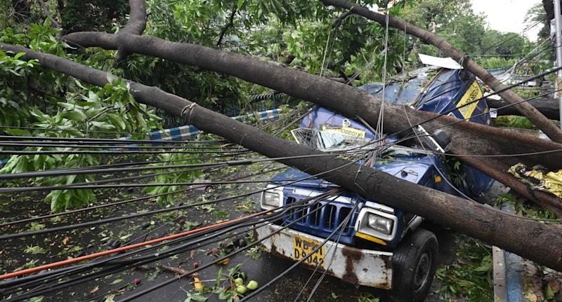 An uprooted tree smashed and destroyed a van, bringing down power lines with it in Beliaghata. Source: AAP