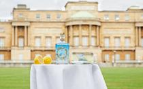 """<p>Queen Elizabeth's go-to cocktail includes gin, so it's no surprise that Buckingham Palace launched a spirit made with botanicals from their gardens. Unfortunately, shipping is only in the U.K. — but we're sure there's a store nearby that can help.</p> <p><strong>Buy it! Buckingham Palace Dry Gin, <a href=""""https://www.royalcollectionshop.co.uk/buckingham-palace-gin.html"""" rel=""""sponsored noopener"""" target=""""_blank"""" data-ylk=""""slk:$56"""" class=""""link rapid-noclick-resp"""">$56</a></strong></p>"""