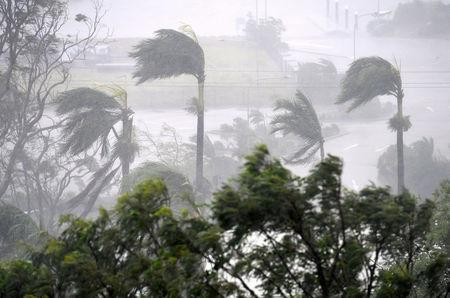 Strong wind and rain from Cyclone Debbie is seen effecting trees at Airlie Beach, located south of the northern Australian city of Townsville