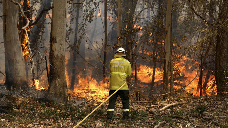 A National Parks and Wildlife crew member fights flames at Half Chain road at Koorainghat, near Taree in the Mid North Coast region of NSW.