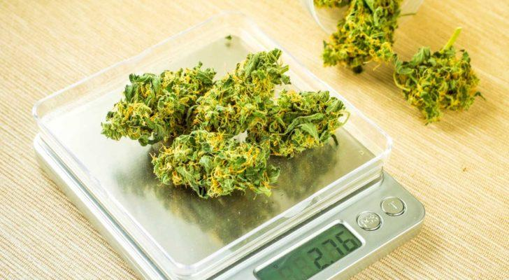 10 Medical Marijuana Stocks to Cure Your Portfolio