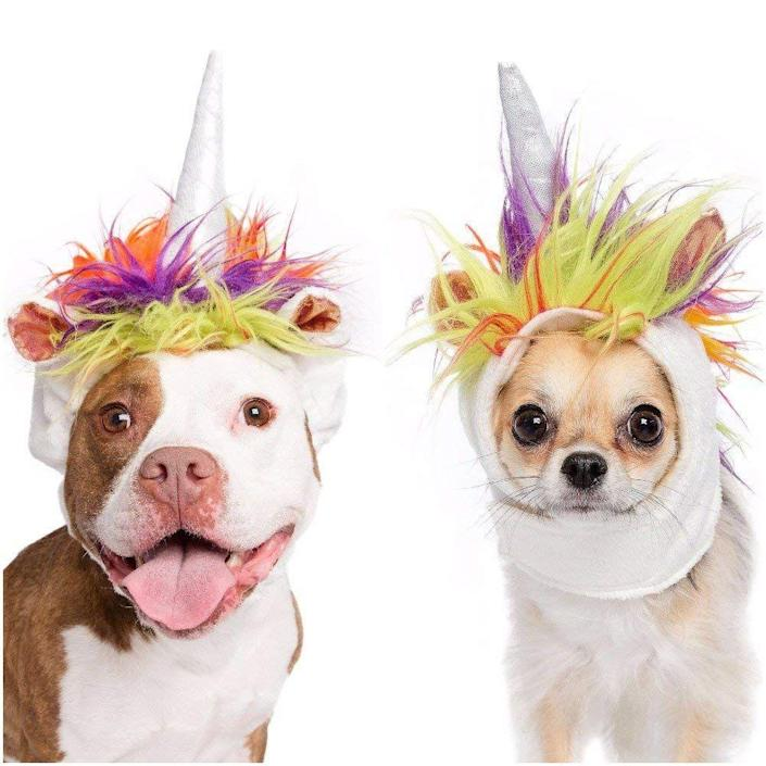 "<p>Always be yourself, unless you can be a unicorn. Then be glad you got away with only a headpiece this season.</p> <br> <br> <strong>Pet Krewe</strong> Unicorn Dog Costume and Cat Costume, $16.95, available at <a href=""https://www.amazon.com/Pet-Krewe-Unicorn-Dog-Costume/dp/B074FFX3FQ"" rel=""nofollow noopener"" target=""_blank"" data-ylk=""slk:Amazon"" class=""link rapid-noclick-resp"">Amazon</a>"