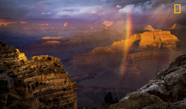 "<p>""Just at the time of sunrise a storm approached the south rim and I almost packed my gears. But it cleared for a temporary period of time giving this amazing view from Powell Point. My first trip to this magnificent Landmark left me speechless while I was clicking this shot."" (© Naresh Balaguru/National Geographic Travel Photographer of the Year Contest) </p>"