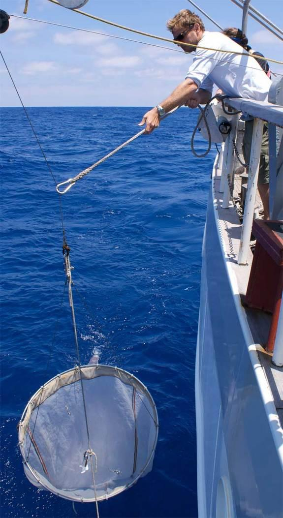 Plastic Trash in Oceans May Be 'Vastly' Underestimated