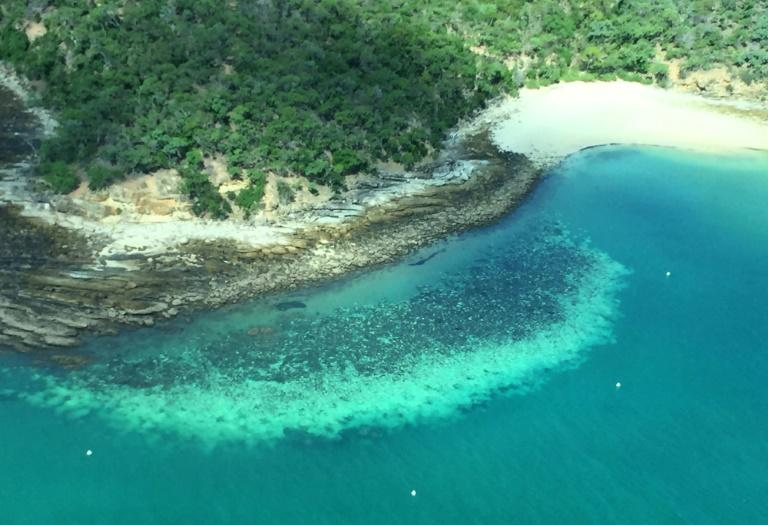 This undated handout photo received on April 6, 2020 from the ARC Centre of Excellence for Coral Reef Studies at James Cook University shows an aerial survey of coral bleaching on the Great Barrier Reef
