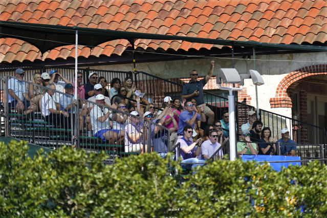 Fans cheer while sitting in a grandstand outside the course overlooking the 15th fairway in order to watch the first round of the Charles Schwab Challenge golf tournament at the Colonial Country Club in Fort Worth, Texas, Thursday, June 11, 2020. (AP Photo/David J. Phillip)