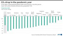 CO2 drop in the pandemic year