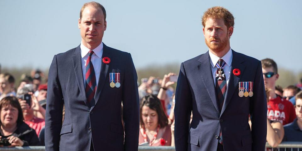 """Prince William and Prince Harry's Rift Is """"as Damaging as Diana's Death"""" to the Royal Family"""