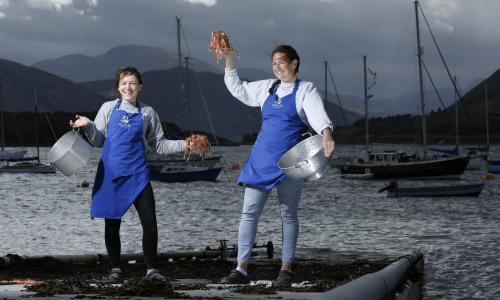 Mussels, haddock and more: recipes from Scotland's Seafood Shack