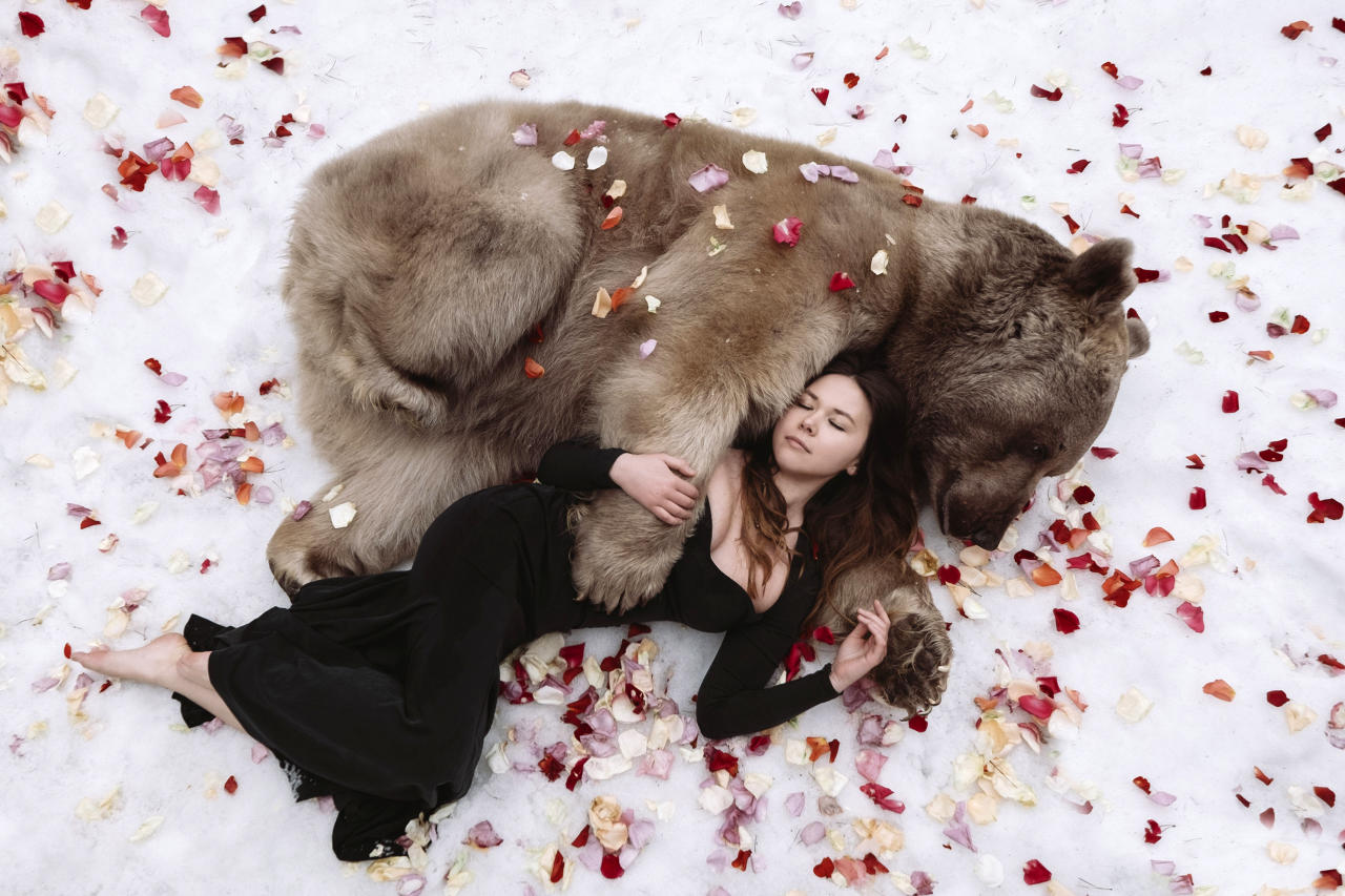 <p>These brave models show no fear as they pose with bears, tigers and wolves in scenes straight from the pages of a fairy tale. (Photo: Olga Barantseva/Caters News) </p>