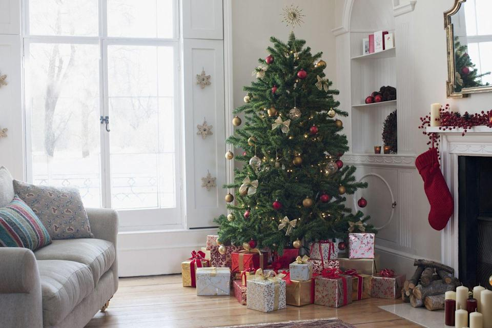 "<p>Unless you cut it yourself, your ""fresh"" Christmas tree probably spent weeks out of the ground before it made it to your local retailer. And there's likely no <a href=""https://www.history.com/topics/christmas/history-of-christmas-trees"" rel=""nofollow noopener"" target=""_blank"" data-ylk=""slk:hiking into the woods"" class=""link rapid-noclick-resp"">hiking into the woods</a> to get it, either: 98% of American trees today grow on farms, mostly in California, Oregon, Michigan, Washington, Wisconsin, Pennsylvania and North Carolina, the country's top Christmas tree-producing states.</p>"