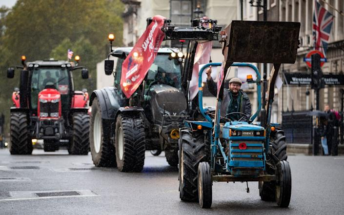 Campaigners from the Save British Farming drove through the centre of London in protest against the Agricultural Bill - Aaron Chown/PA